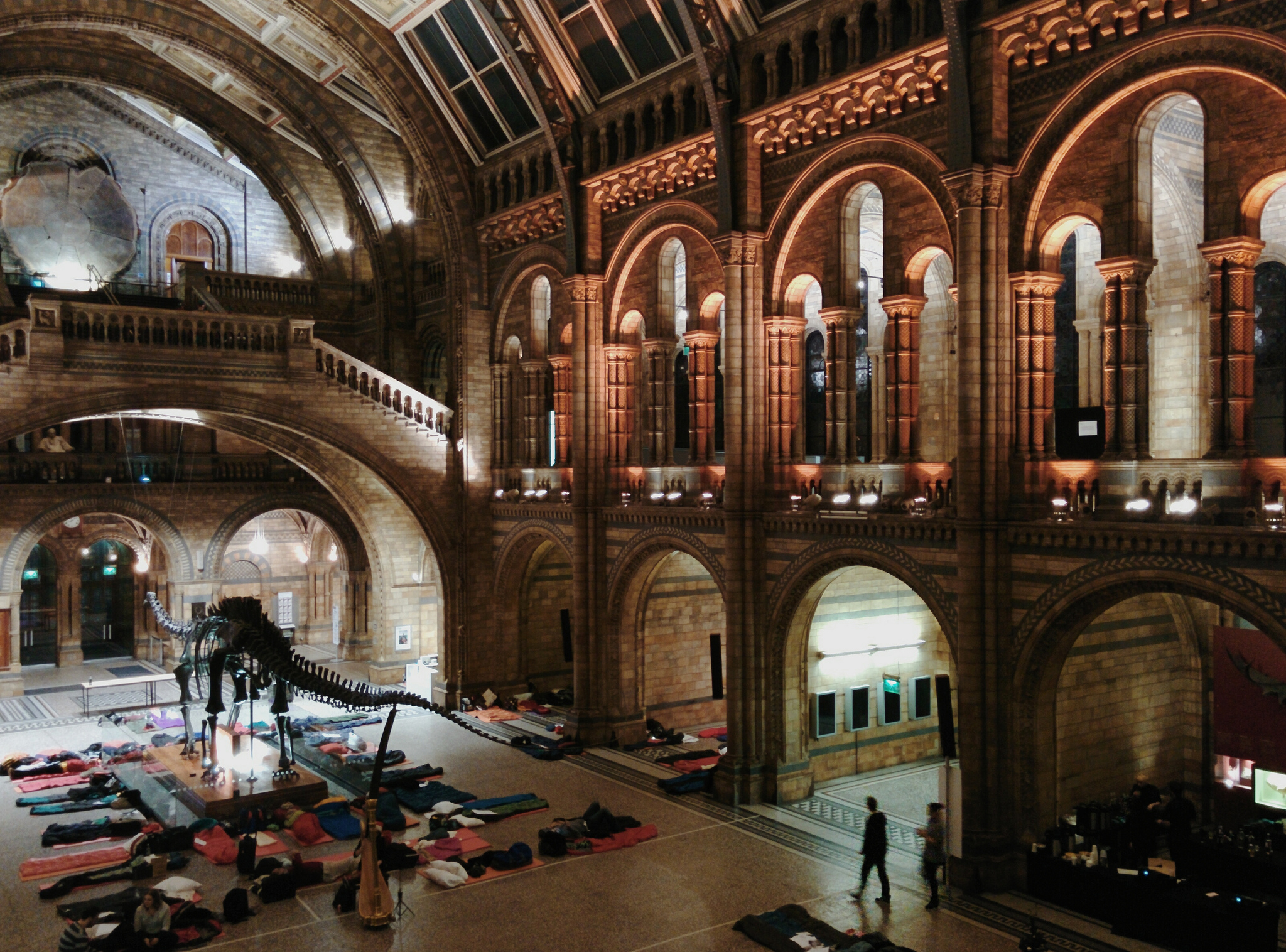 Natural history museum speed dating