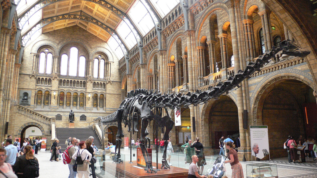 Museum Lates London Natural history museum lates sisterspd