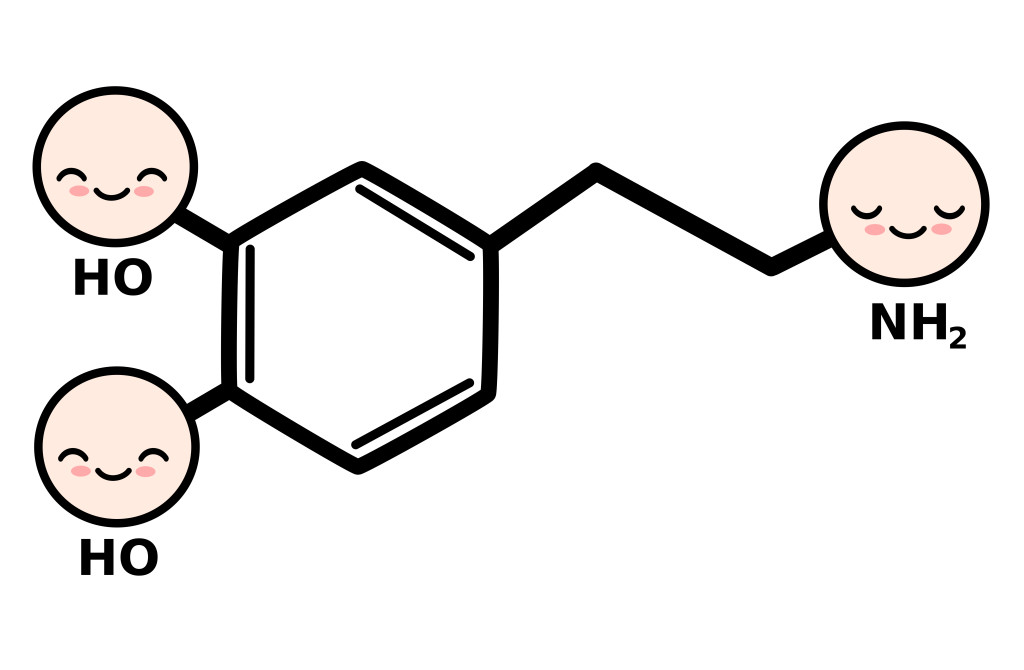 the description of the chemical substance dopamine Dopamine is a catecholamine neurotransmitter that activates five known types of dopamine receptors this chemical was to use more of his substance in.